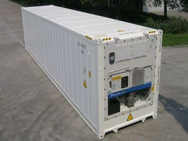 Mua container lạnh
